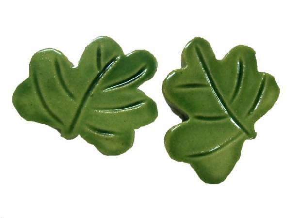 tree-leafs-716p